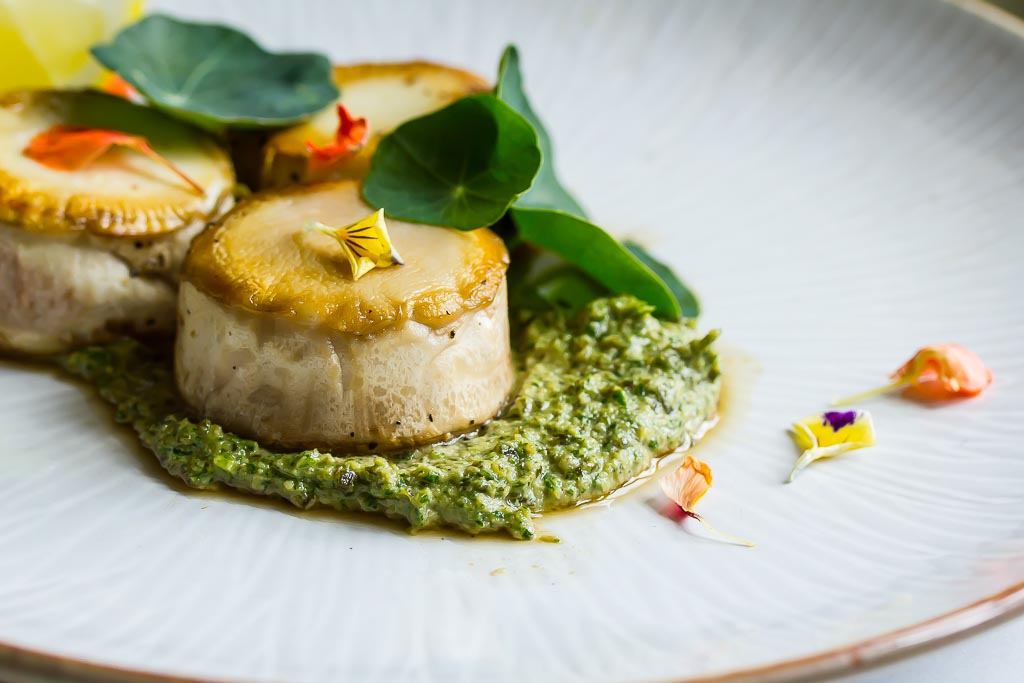 Oyster Mushroom Scallops with Nasturtium Pesto