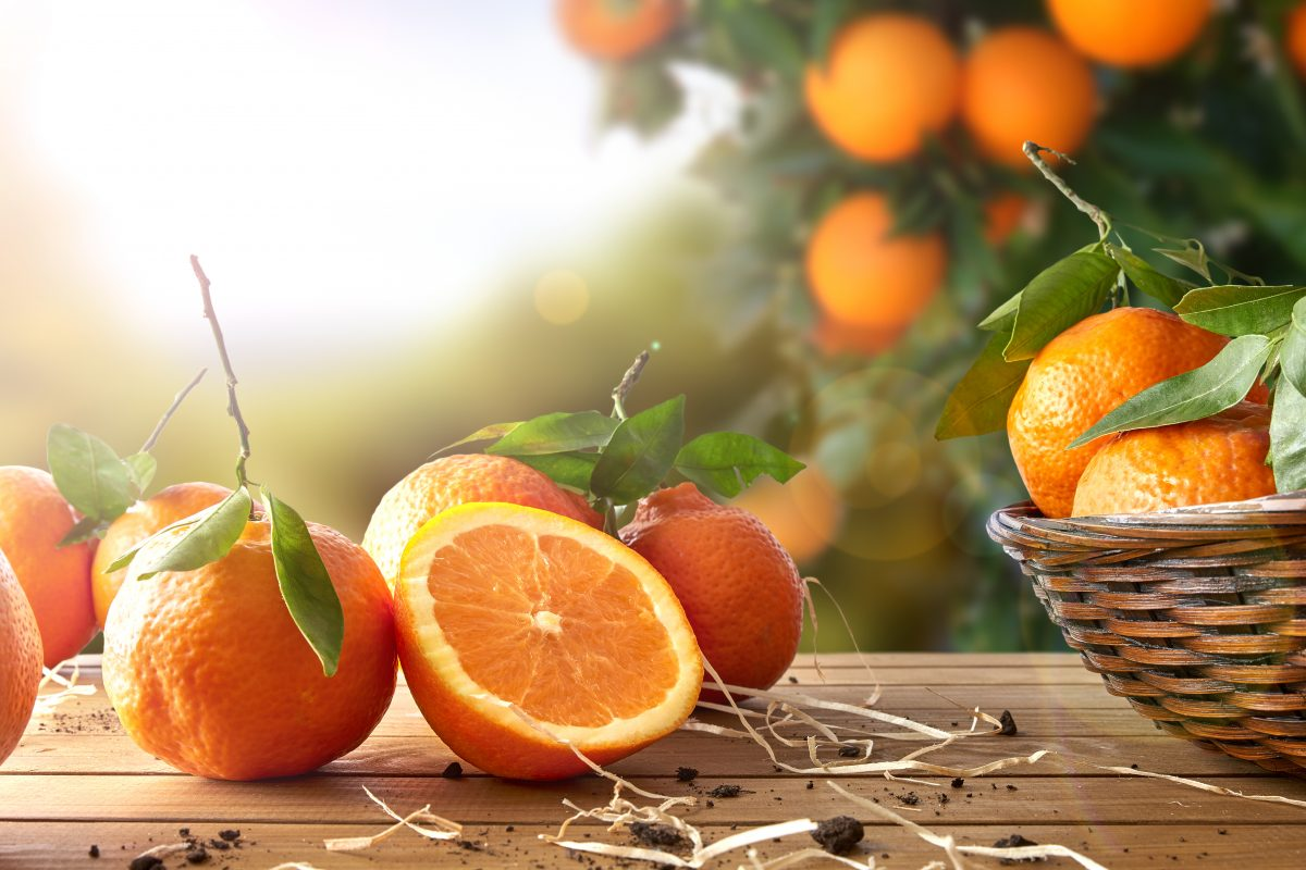 How to Use Oranges For The Holidays: From Snacks to Scents to So Much More