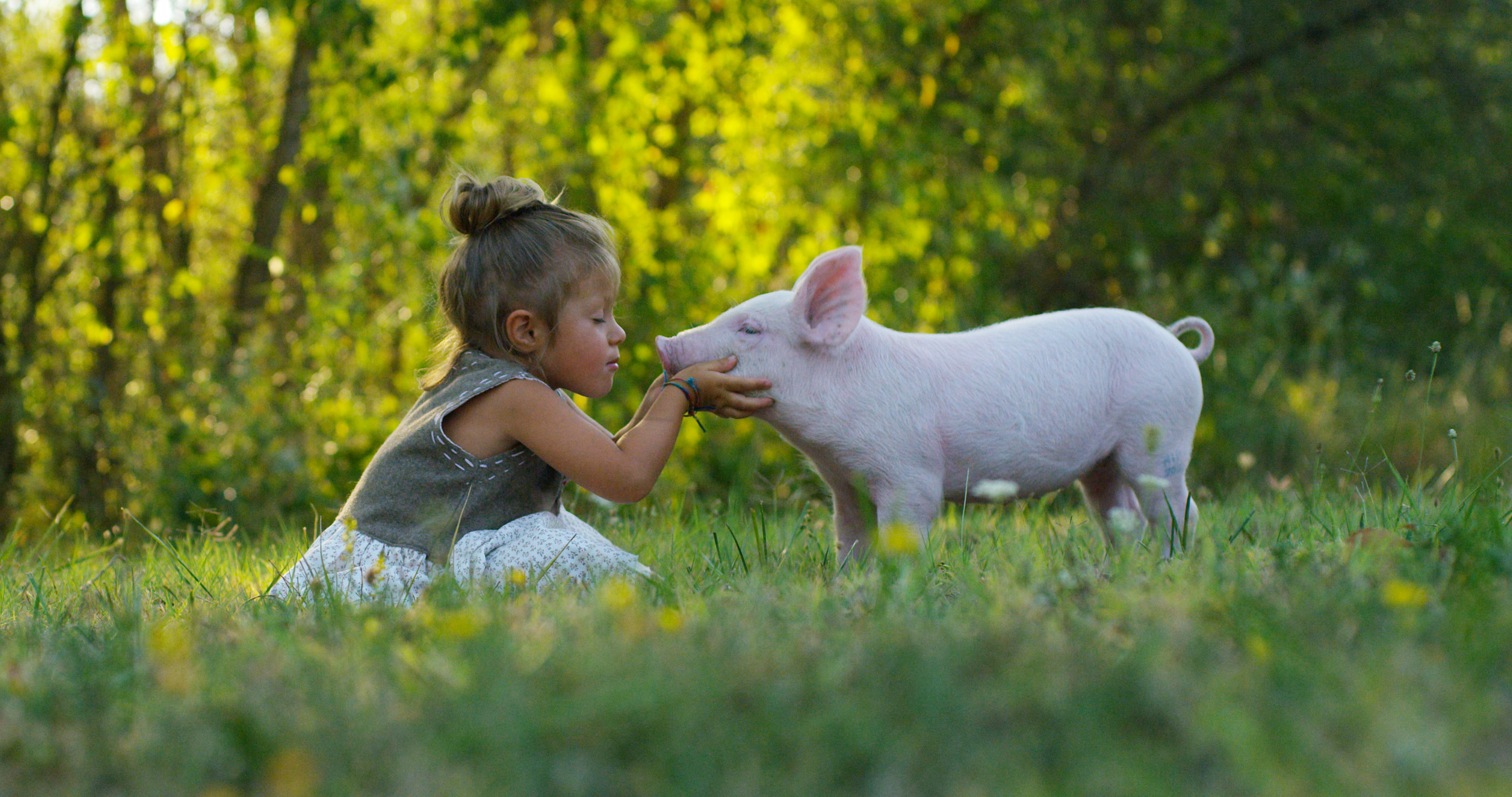 Girl kissing pig