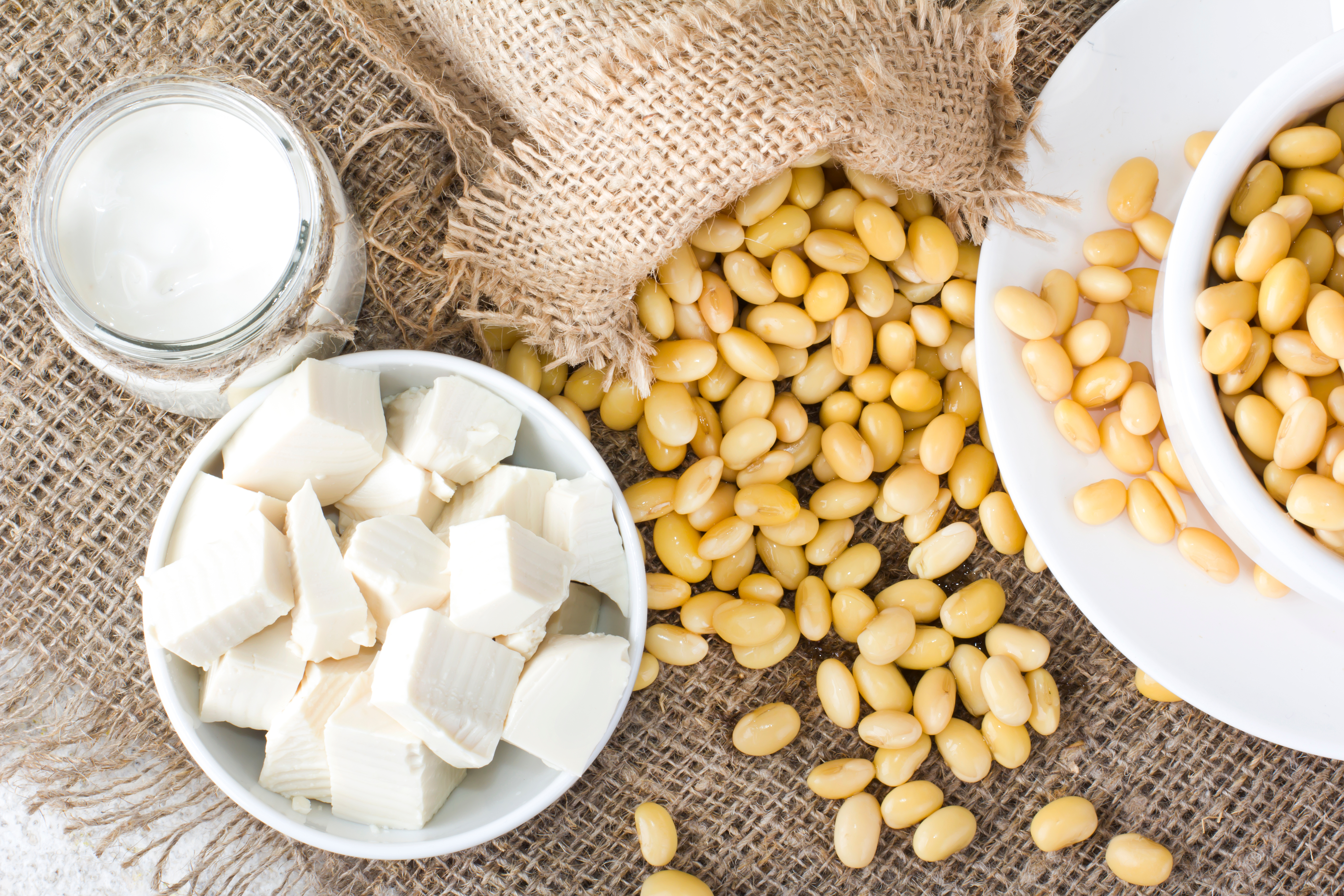 Soybeans, soy milk, and tofu