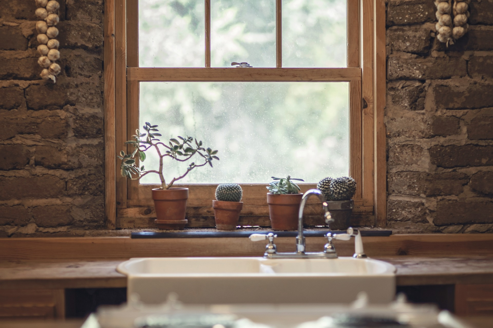 Kitchen sink in front of a window with succulents on the windowpane