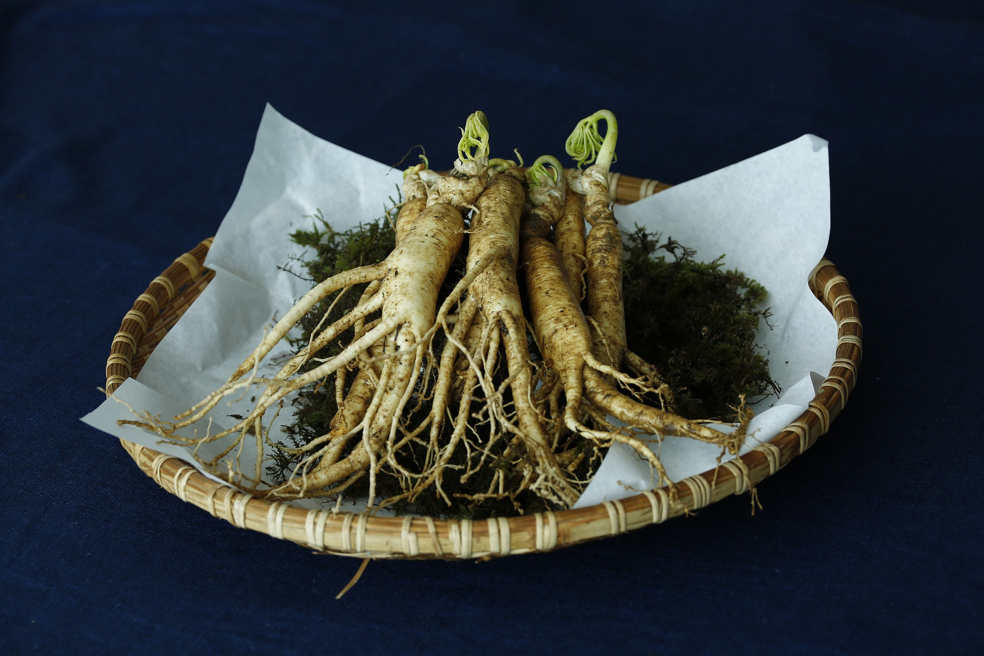 Herb ginseng on a plate