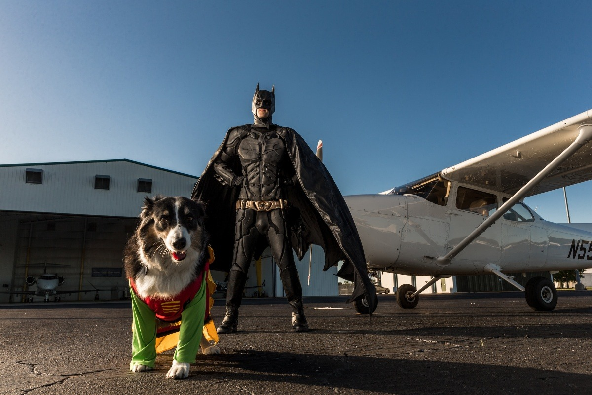 Man dressed as Batman and dog dresses as Robin