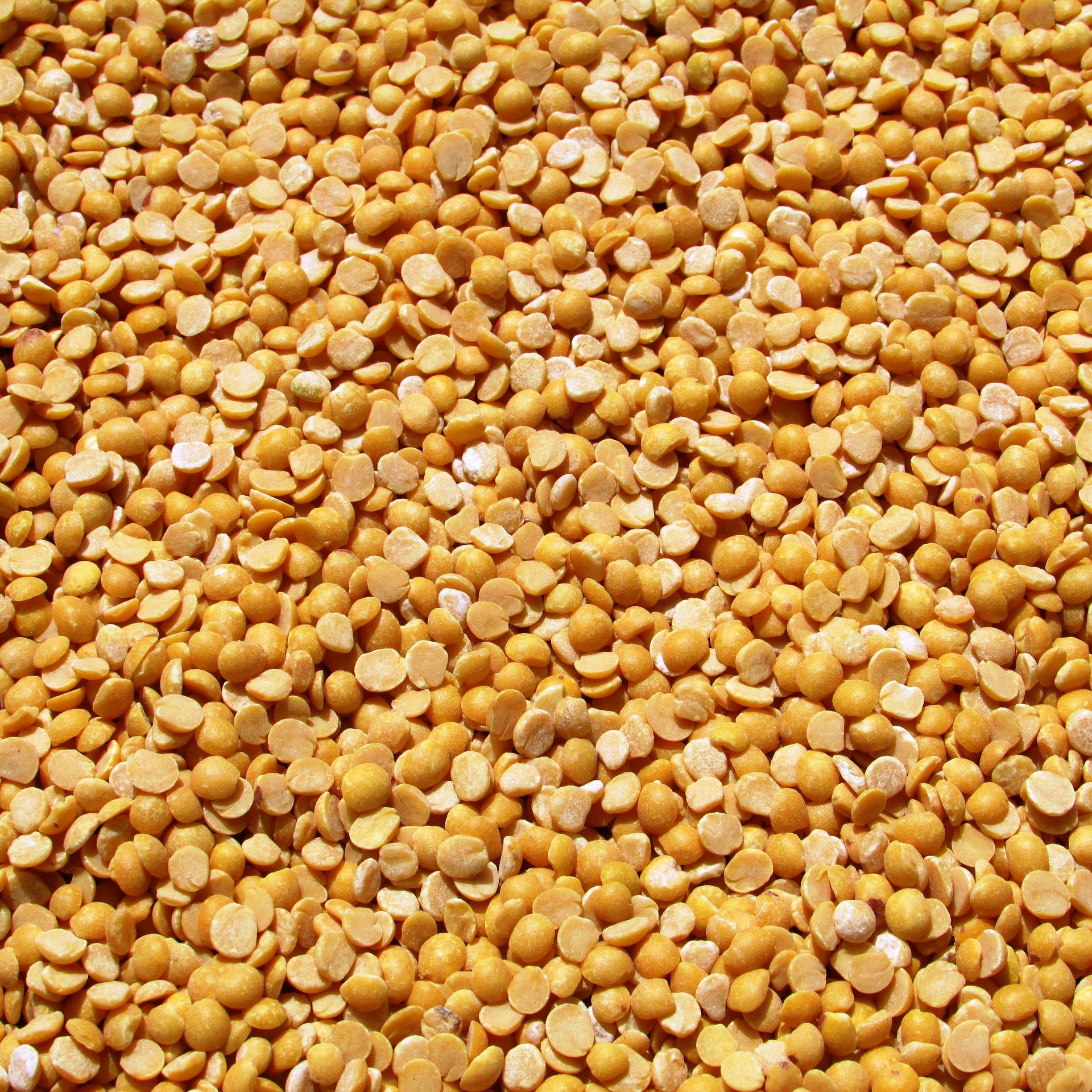 Split yellow peas, high in protein