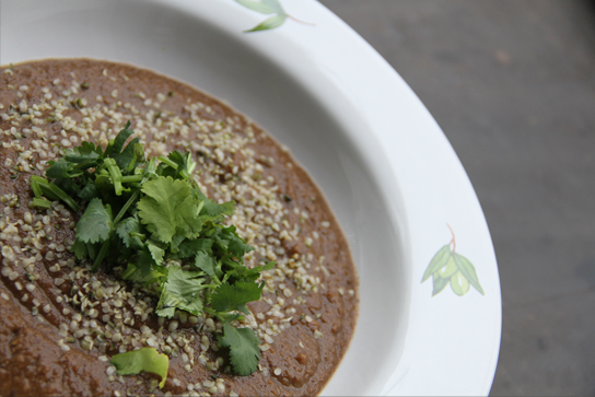 Indian eggplant soup vegan