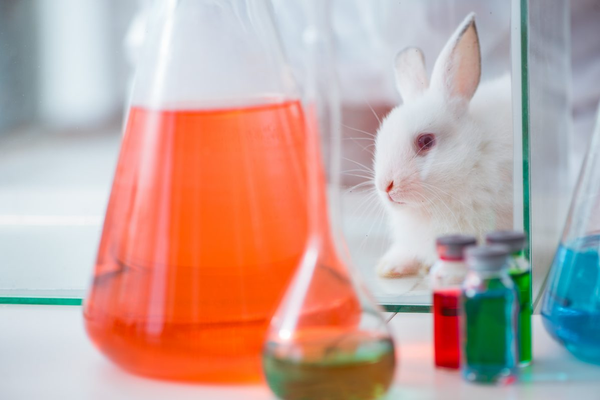 U.S. Environmental Protection Agency Eliminating Mammalian Animal Testing