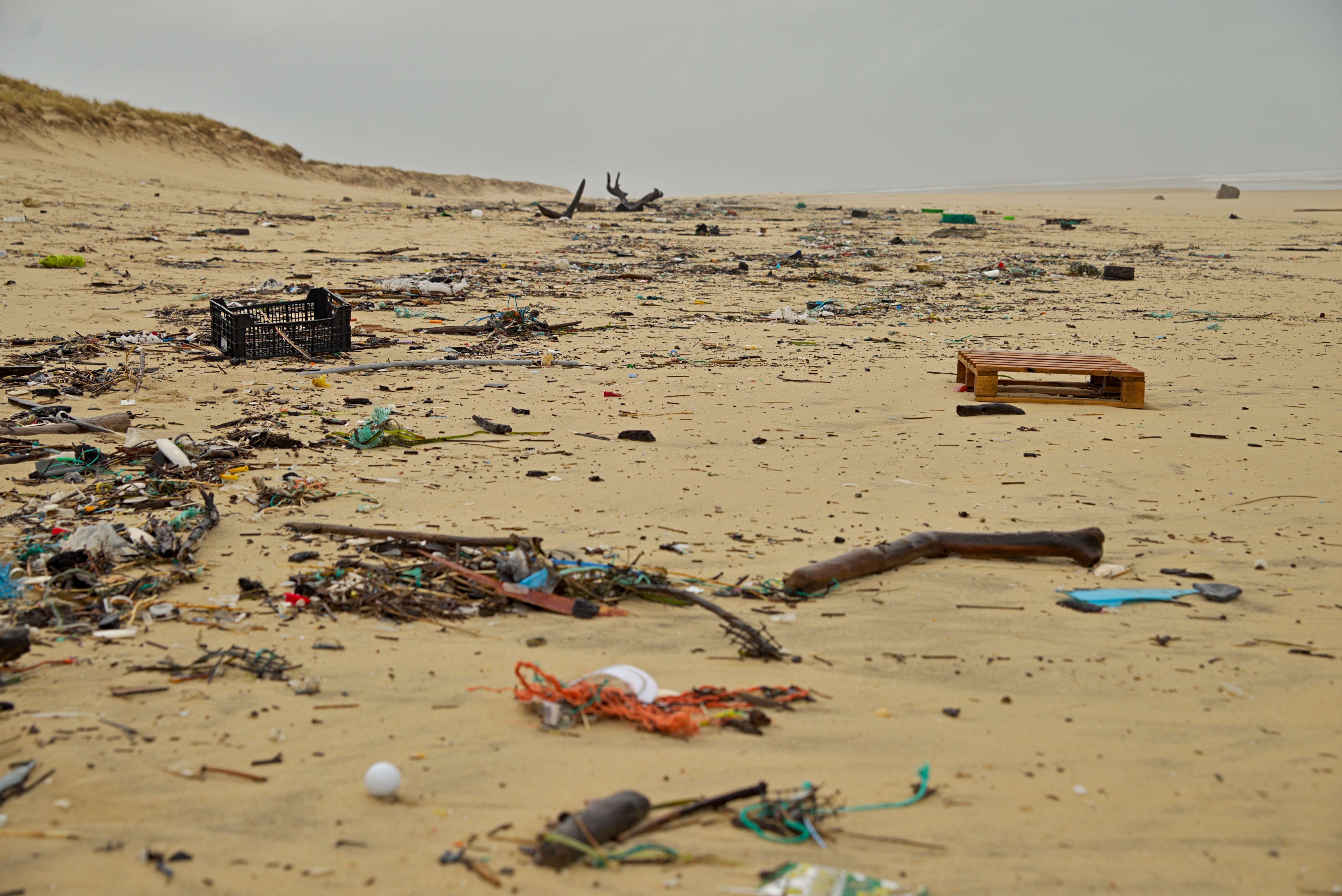 Beach Filled with Plastic