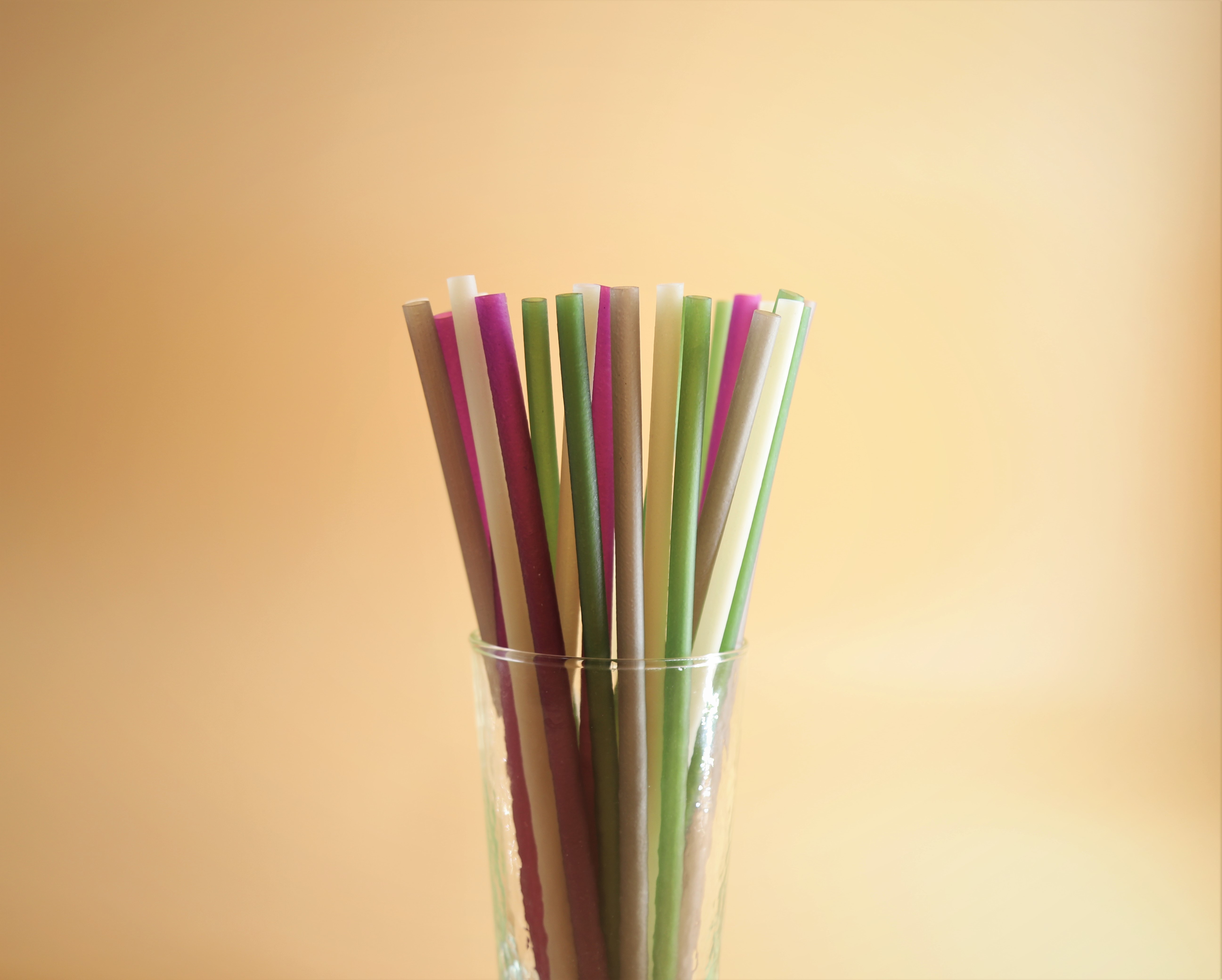 Plastic Straws in Glass