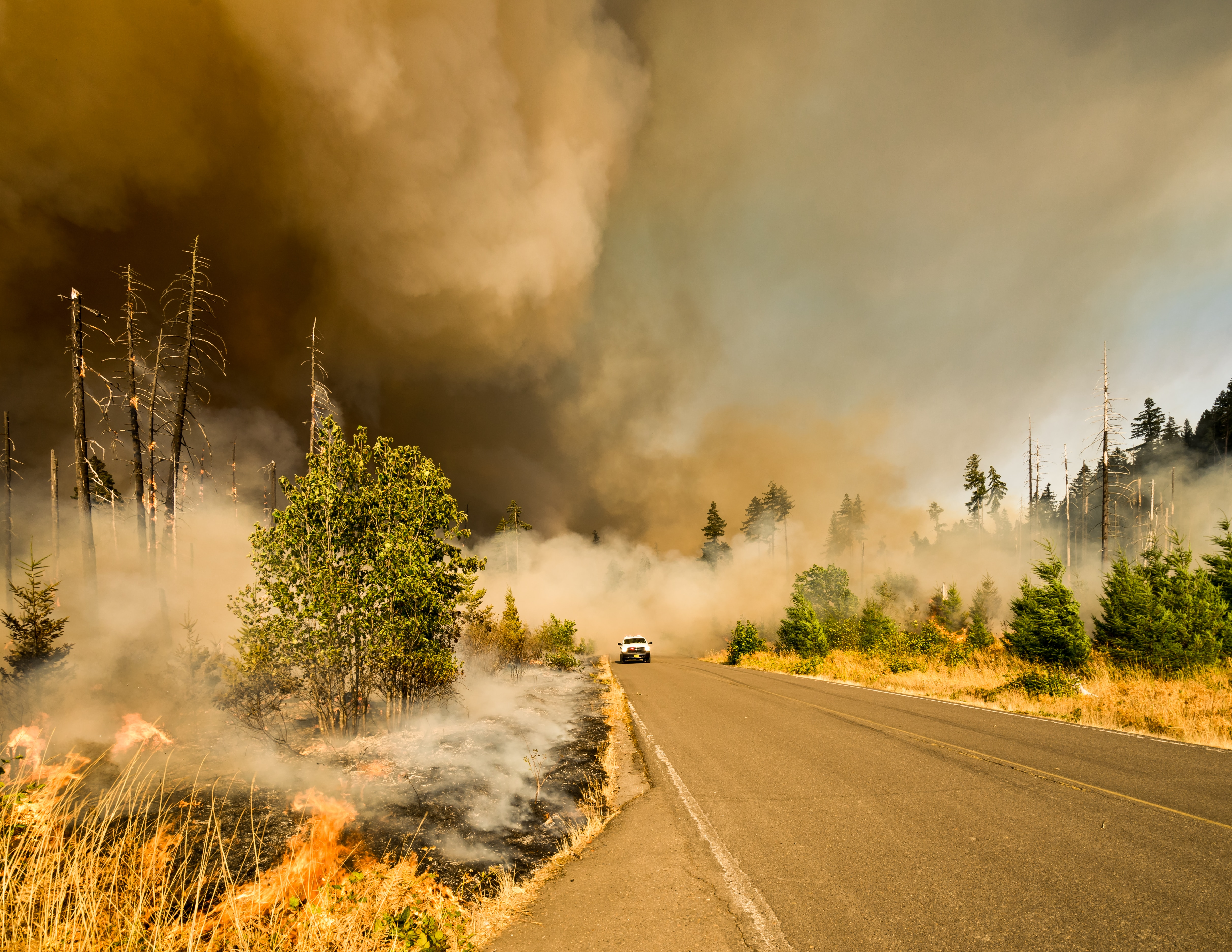 Wildfire Photo Over Road