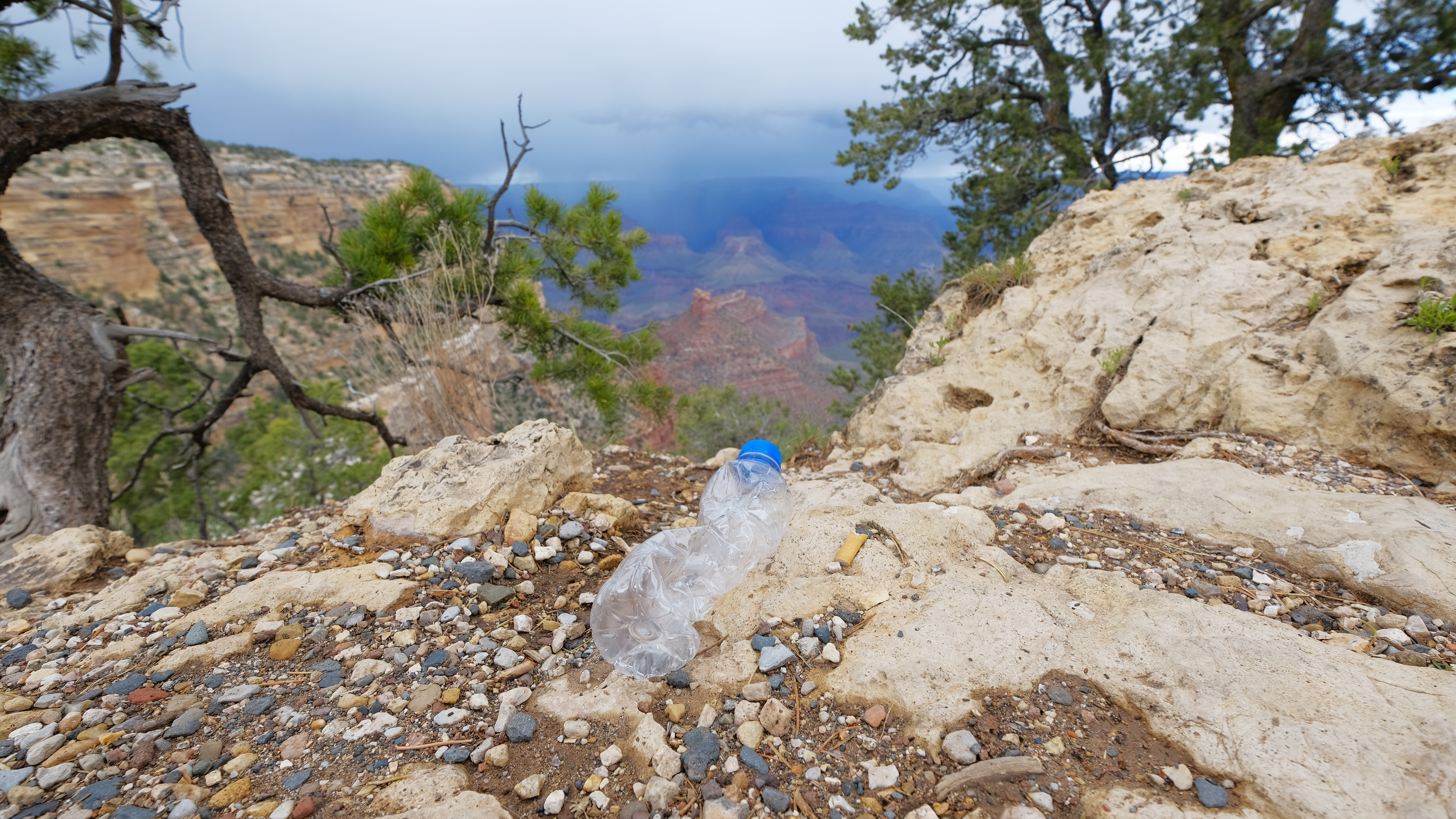 Plastic water bottle on Grand Canyon National Park