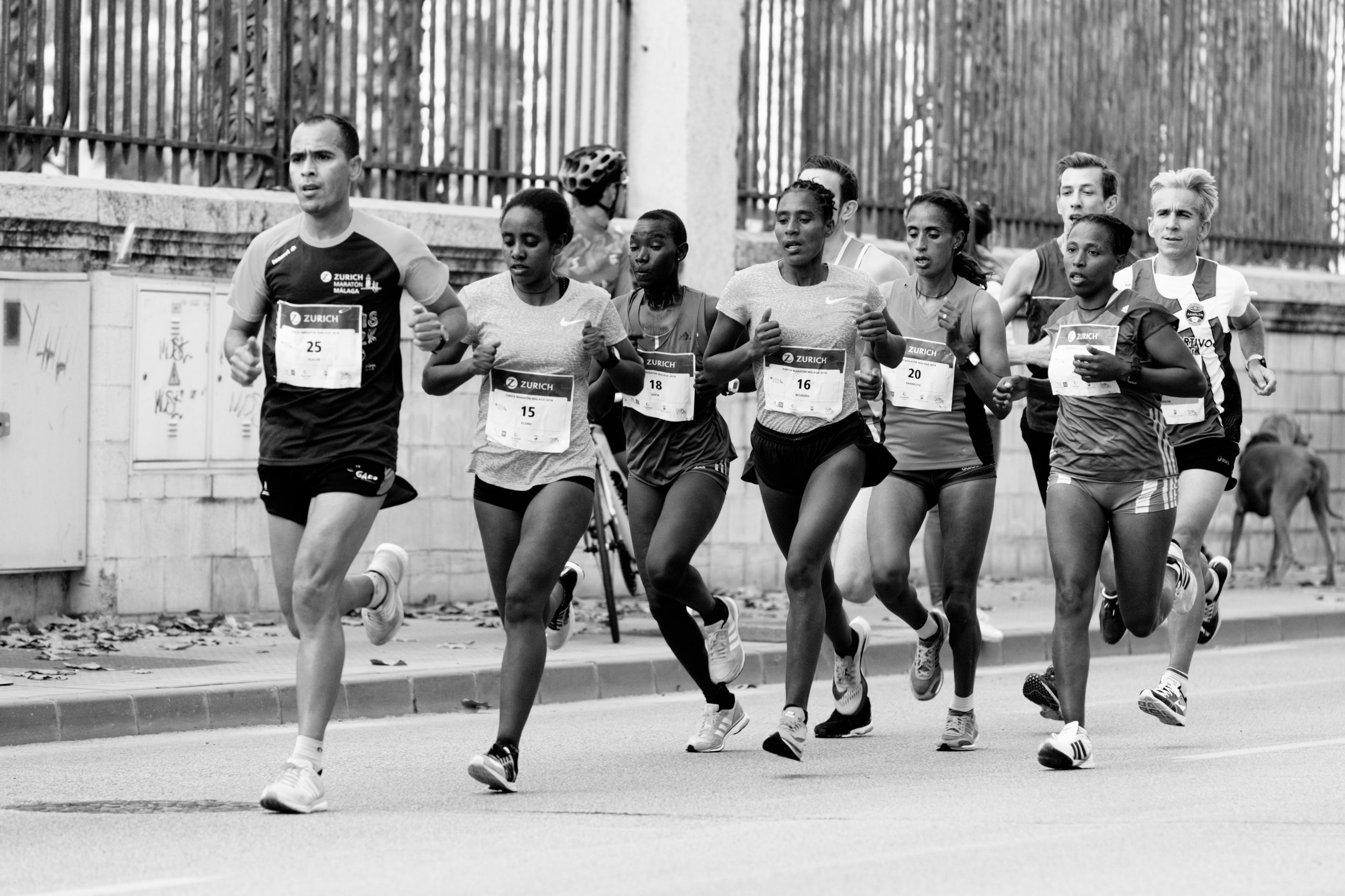 Group of Runners