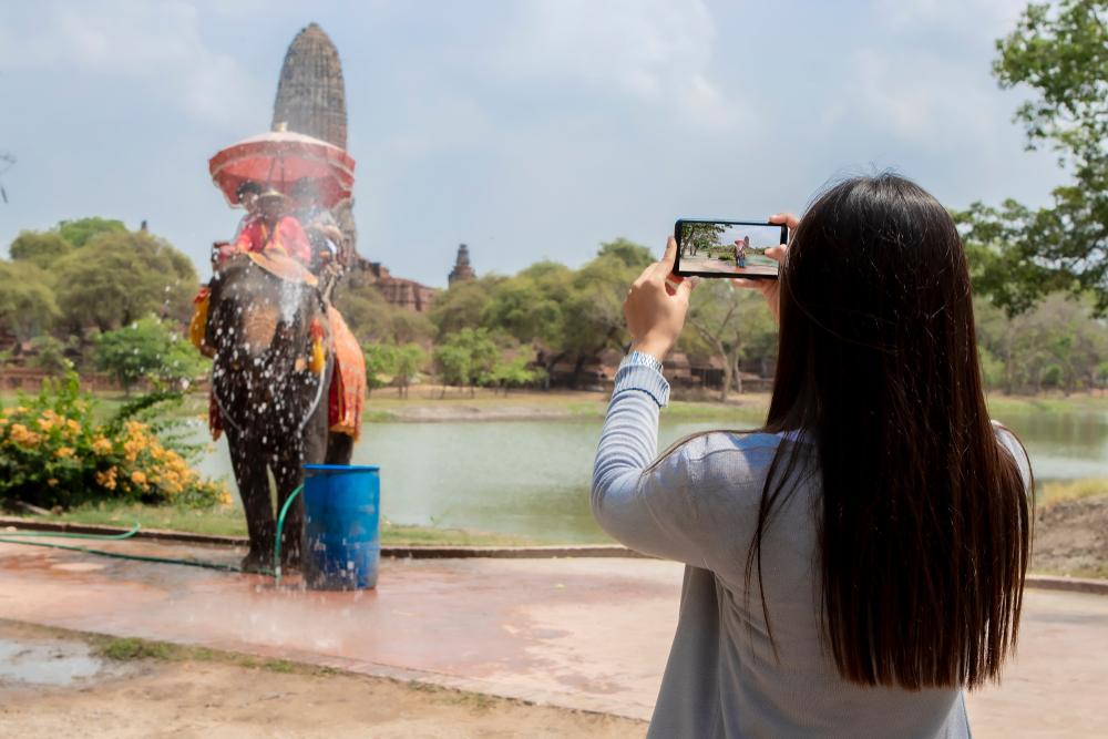 Tourist taking photos of cruel elephant rides