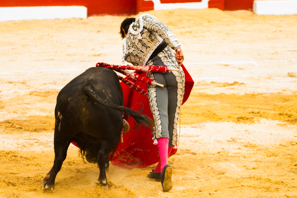 Bullfighter torturing a bull