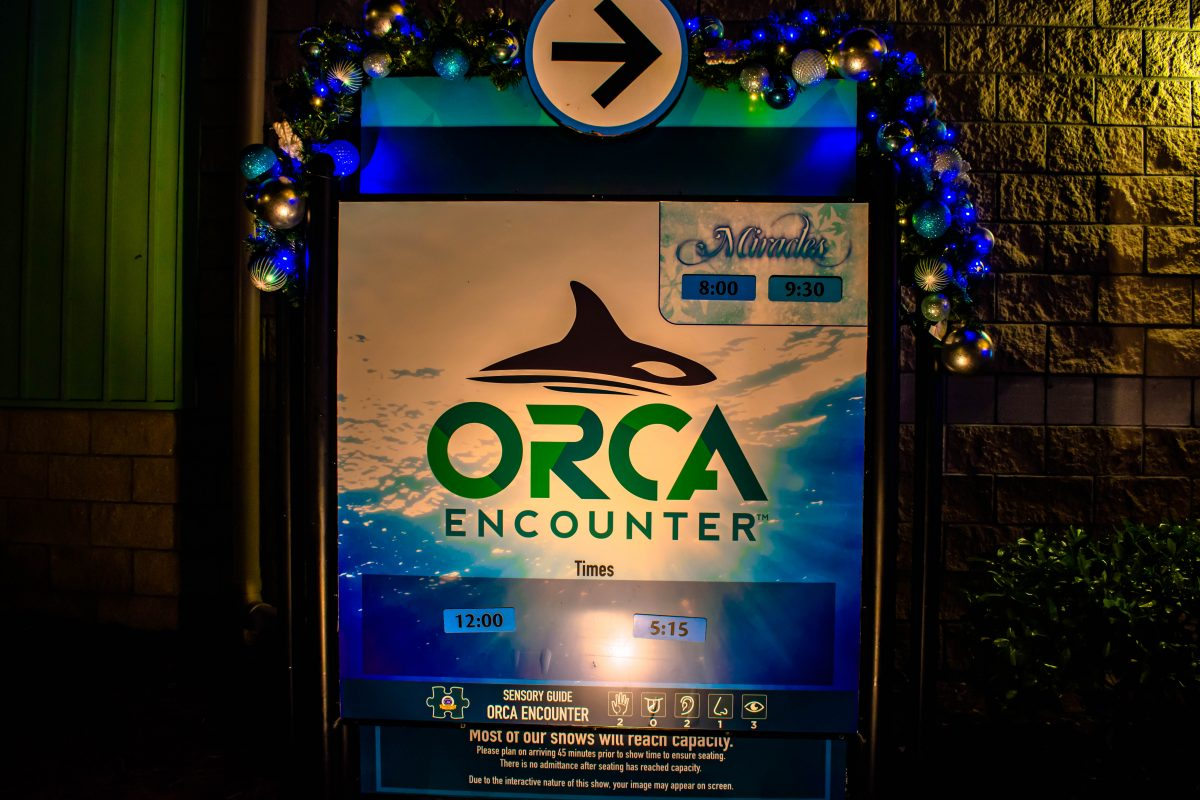 Seaworld orca encounters