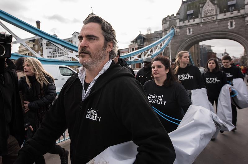Joaquin Phoenix Animal Equality UK