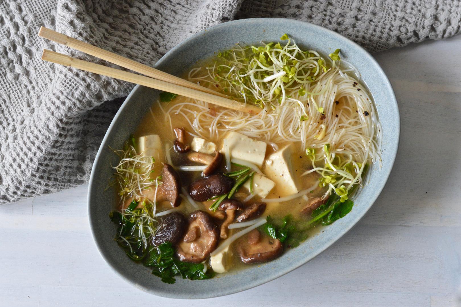 Japanese noodle soup