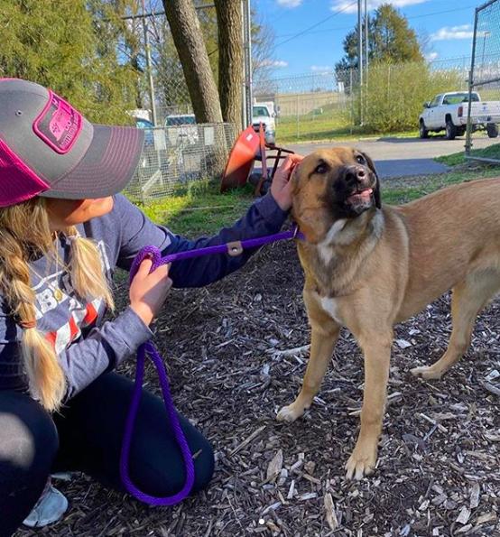 Miranda Lambert with dog in shelter