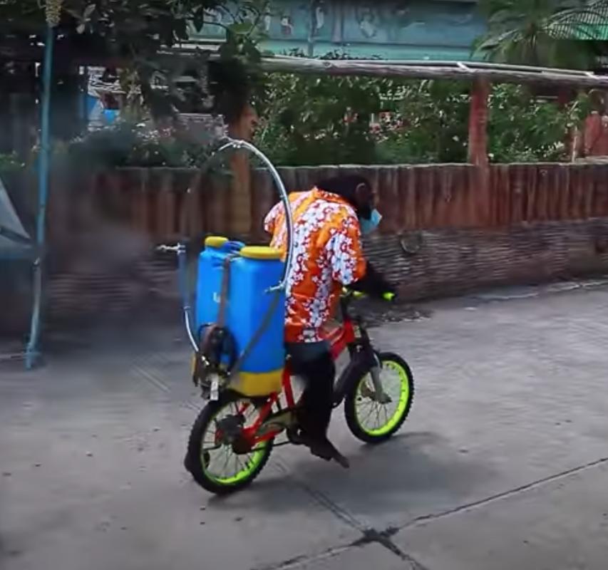 chimpanzee on bike