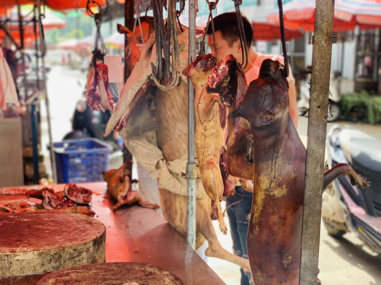 Dog Meat Market