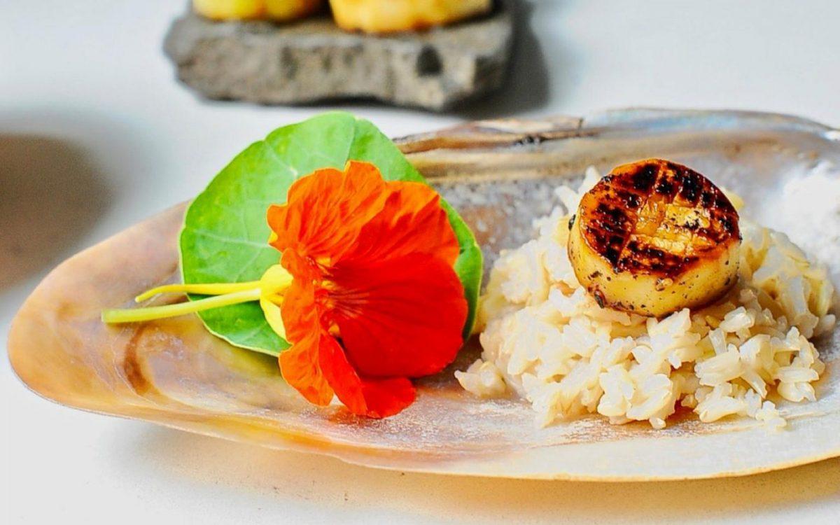 Miso Glazed Eggplant 'Scallops'