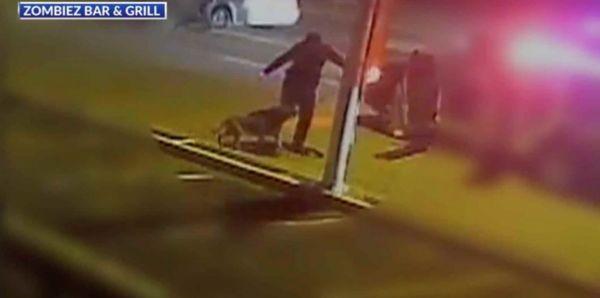 police officer kicking dog