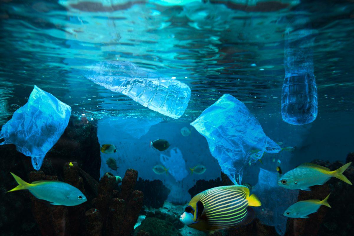 New Short Film Narrated by Morgan Freeman Highlights Ocean Waste