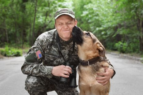 Service dog with veteran