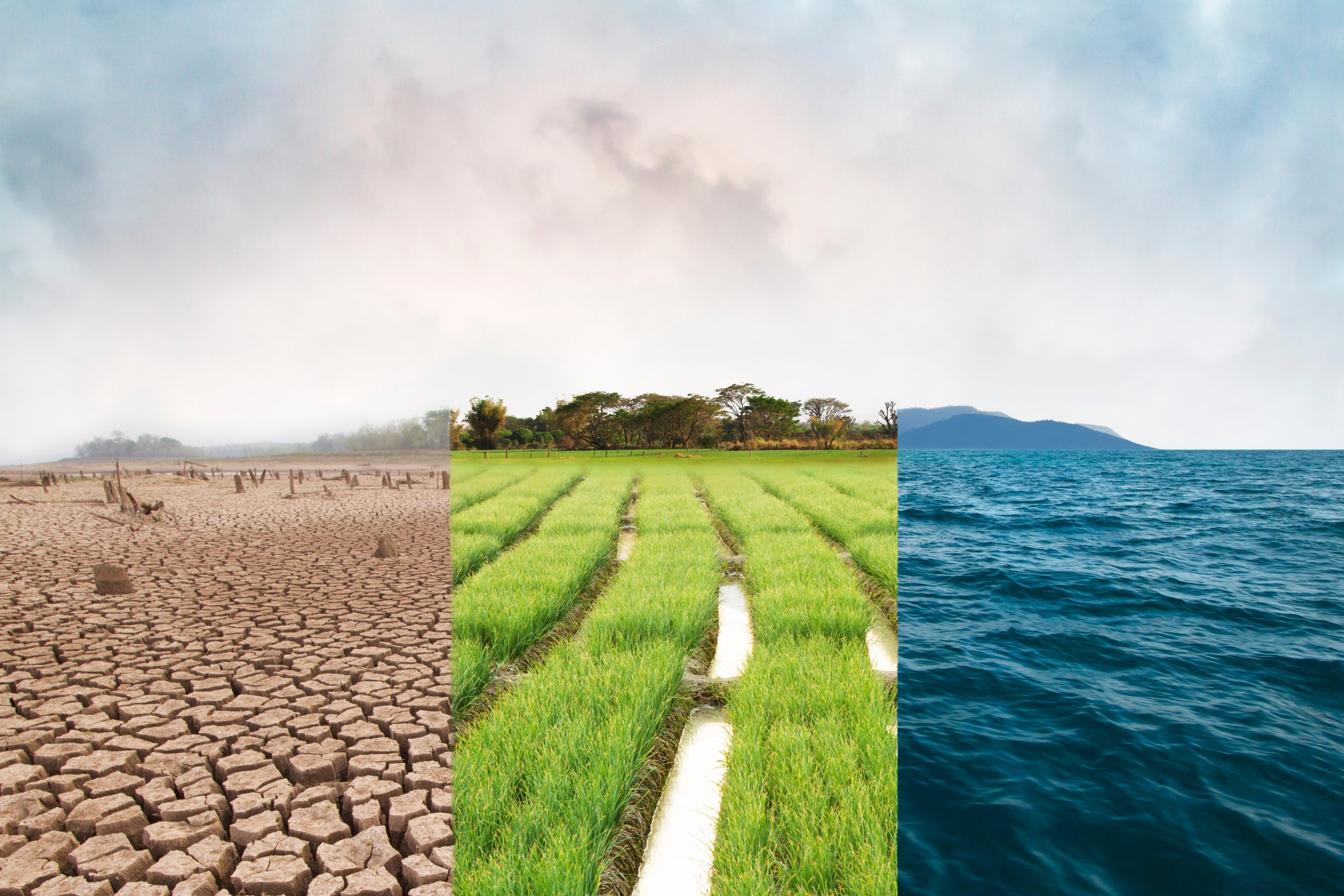 Climate Change image