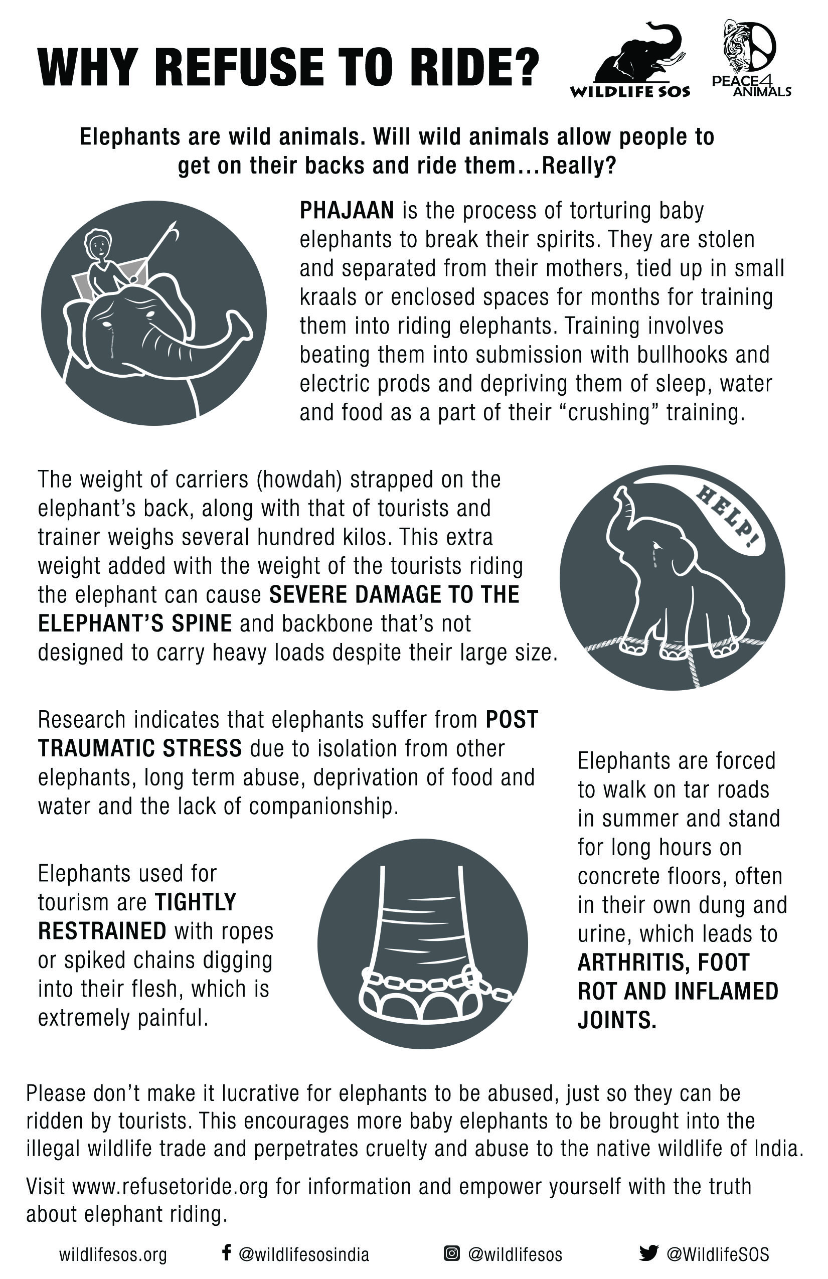 Refuse to Ride infographic