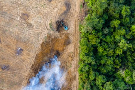 Ariel shot of Amazon rainforest deforestation.
