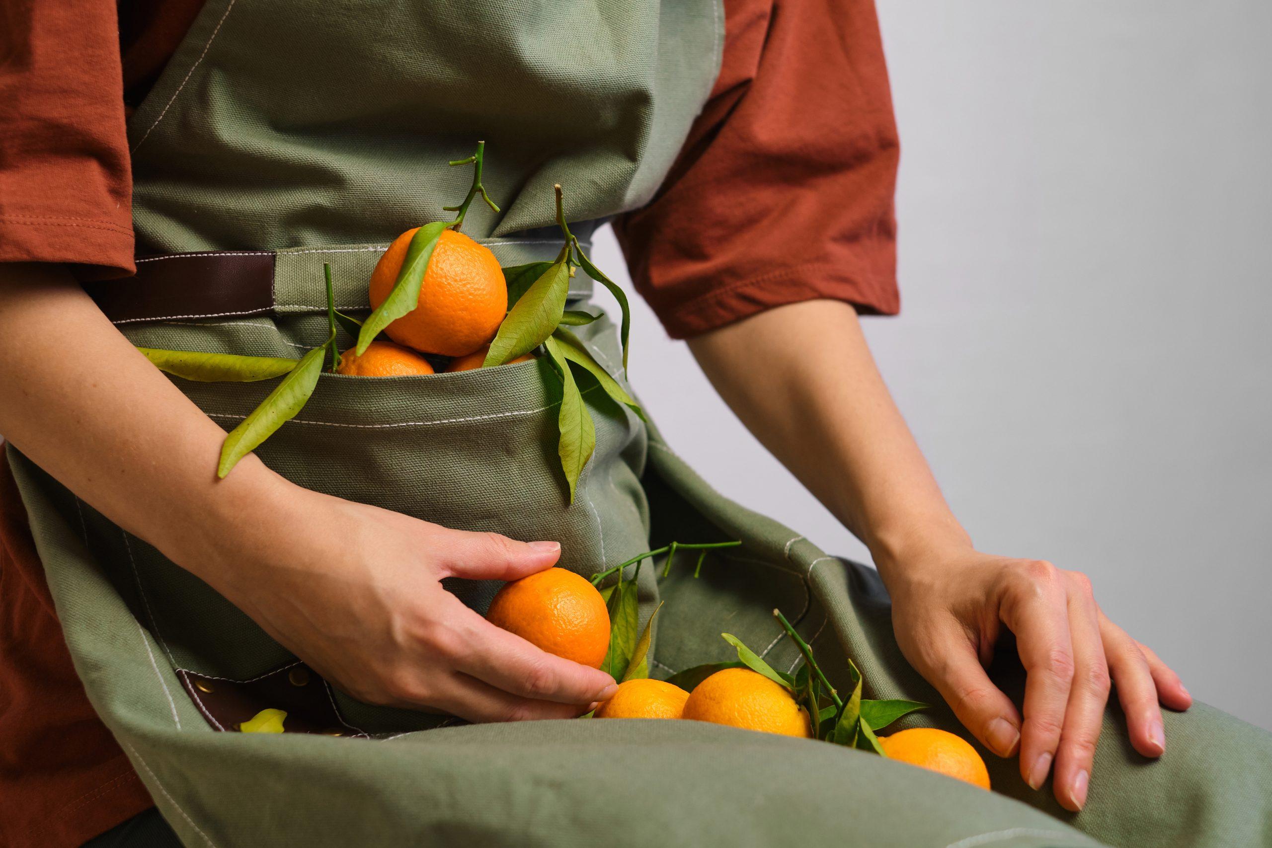 harvest apron