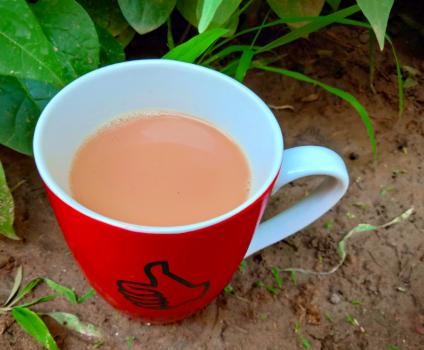Foolproof Vegan Masala Chai Tea