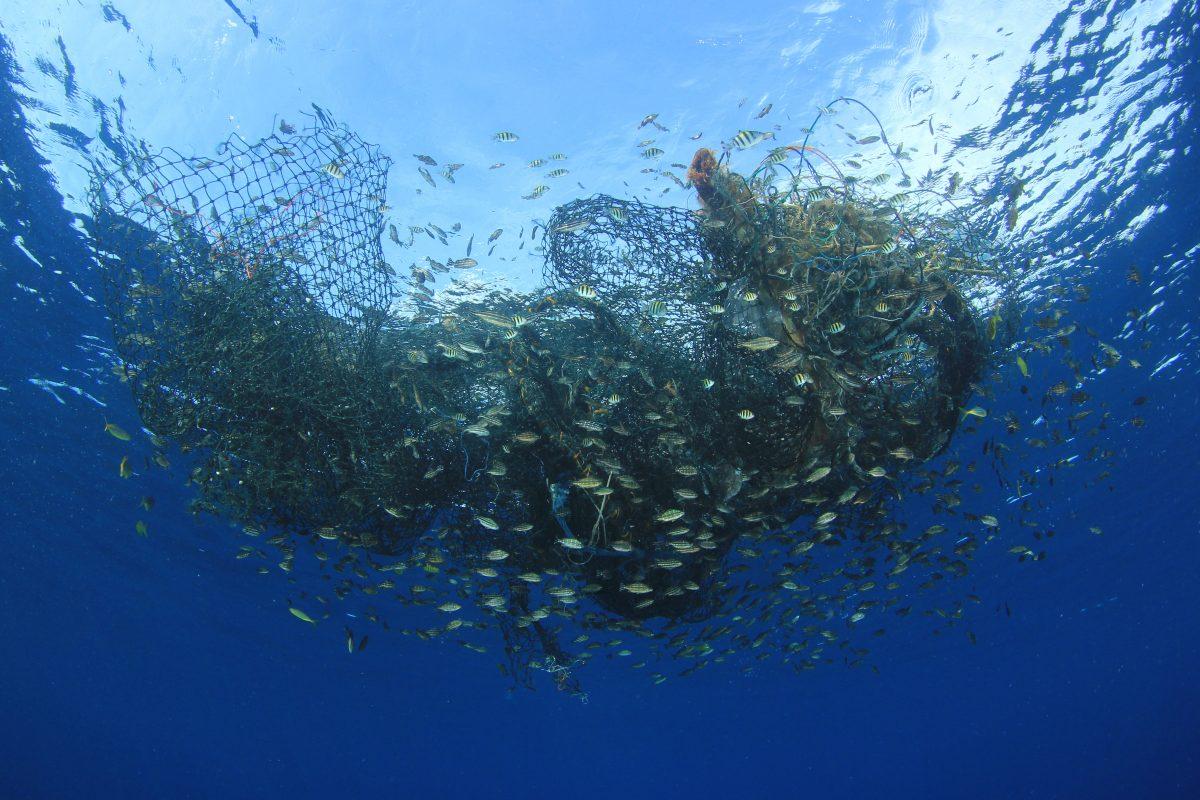 ocean net