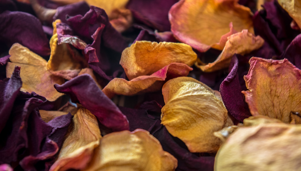 10 Things You Can Do with Rose Petals