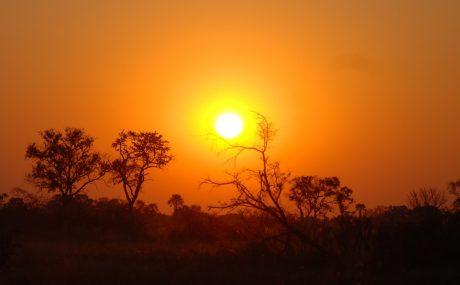 A sunset in the Okavango Delta