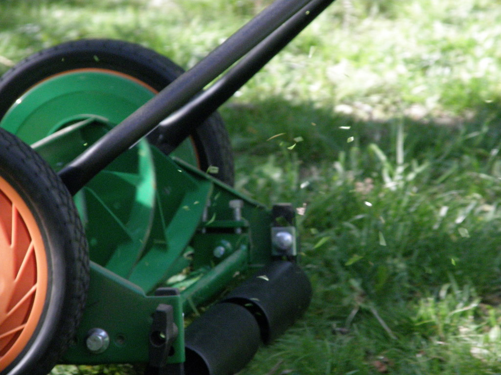 Save and Use Your Grass Clippings, Here's Why!