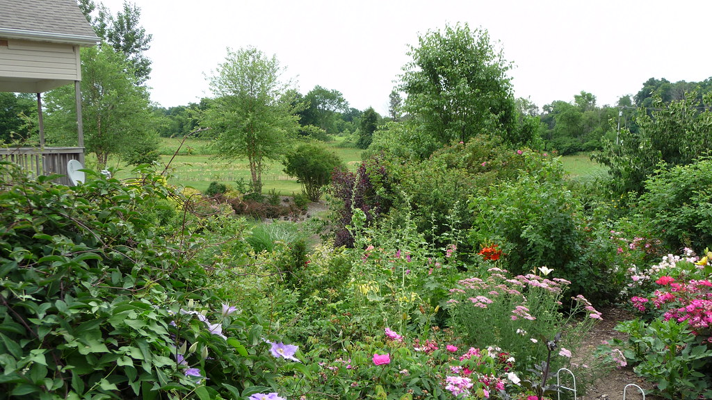 Stumperies, Rockeries and Other Fun Stuff to Build in the Garden