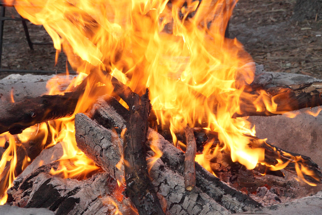 Tips for Cooking Quick Plant-Based Meals on the Campfire