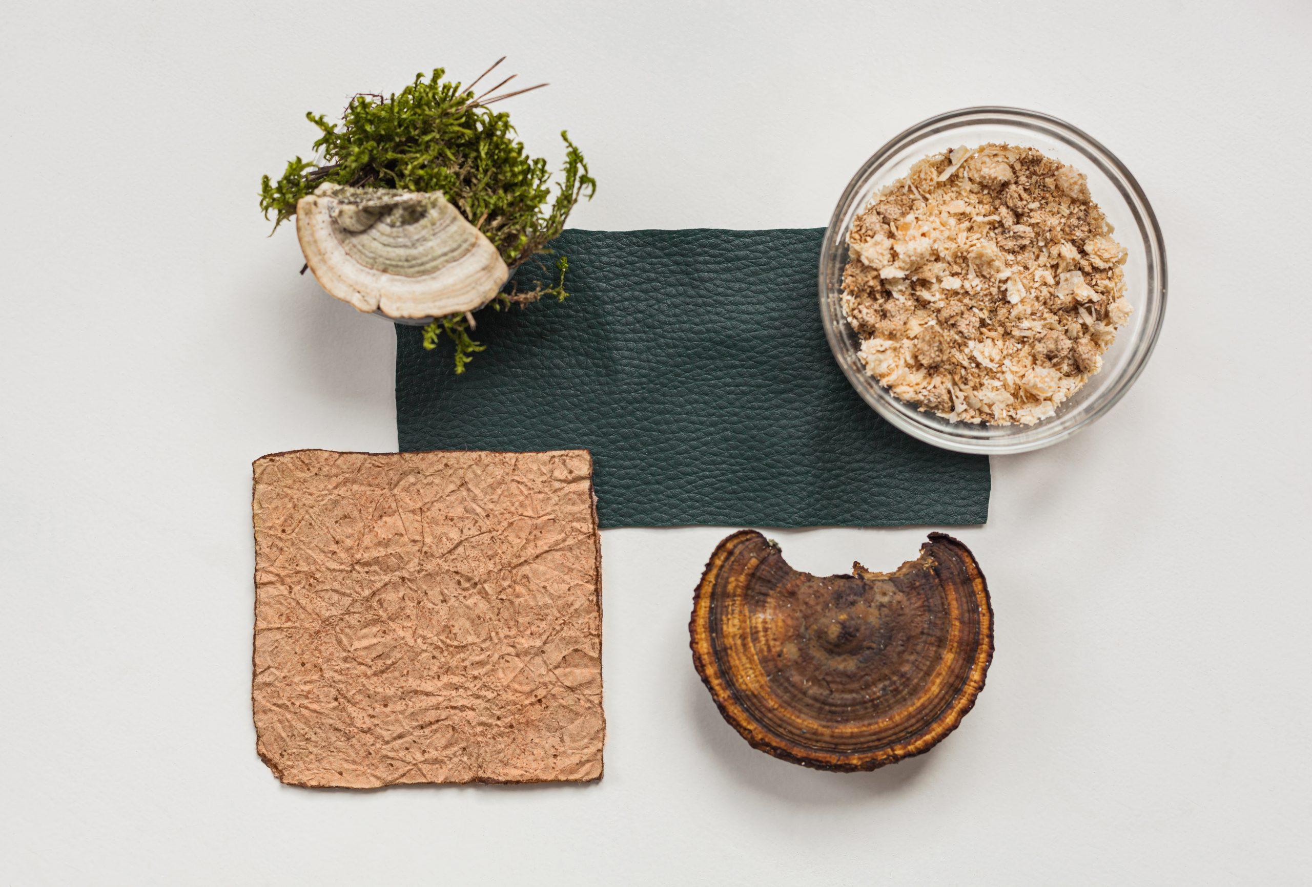 vegan leather with mushrooms