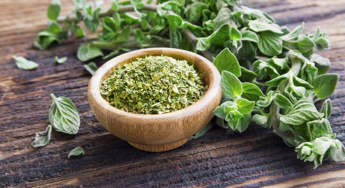 Impressive Health Benefits Of Oregano