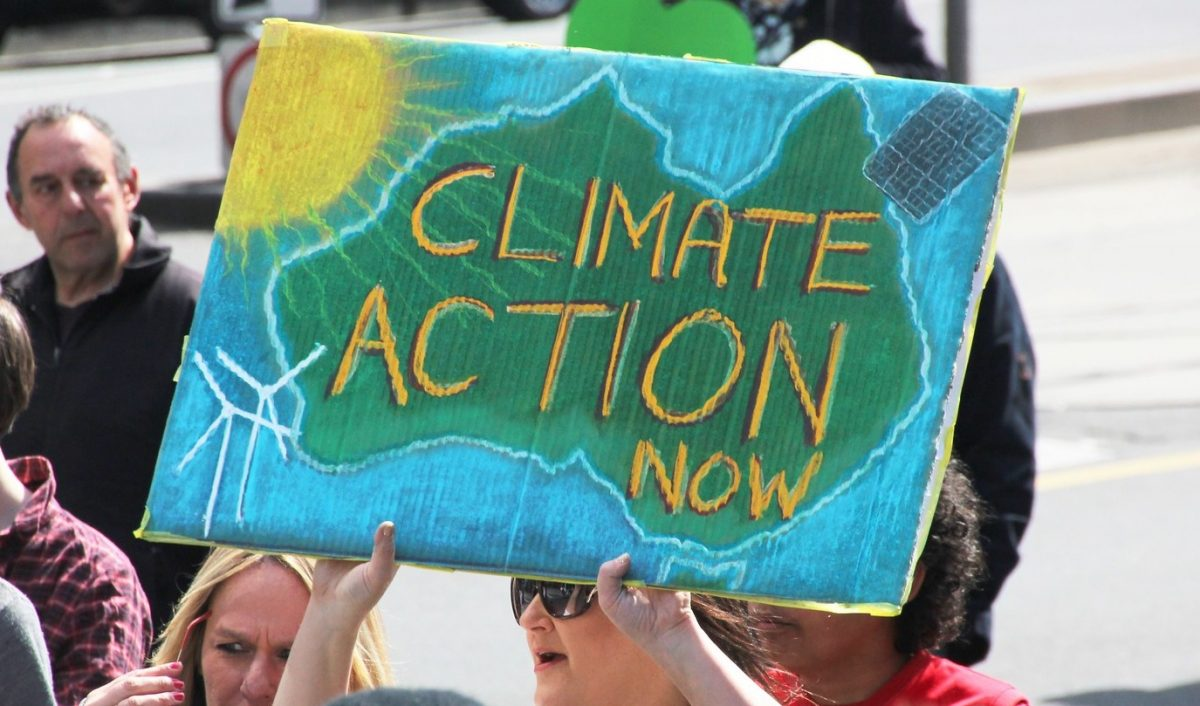 A protestor holds up a placard reading 'Climate Action Now' at a climate demonstration