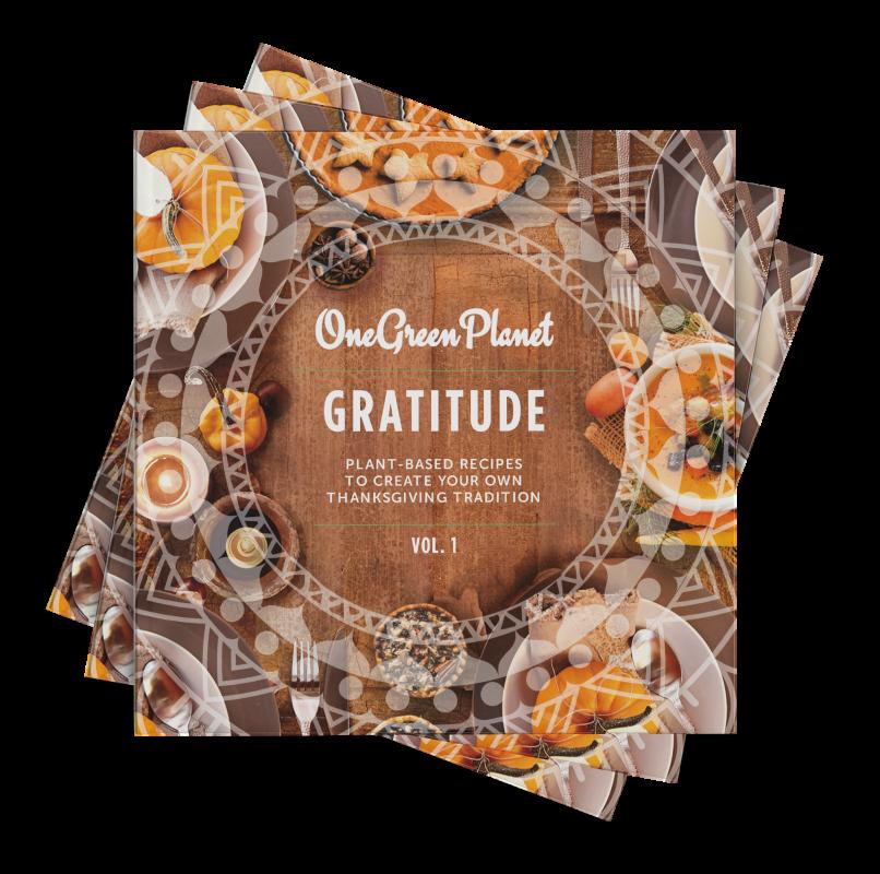 vegan thanksgiving cookbook
